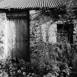 Irische Cottage Ruine