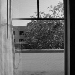 Ausblick von meinem Hotelzimmer in Jupiter, Florida